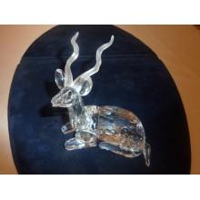 The Kudu