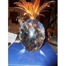 Ananas Dorato Grandezza Speciale